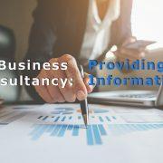 business consultancy providing info